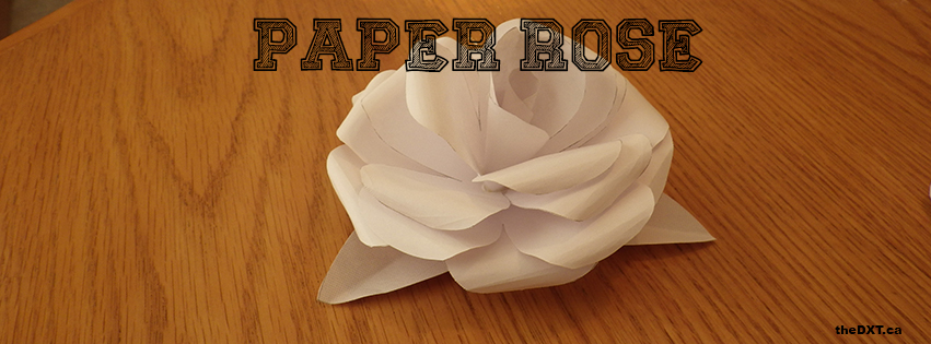 paper-rose-cover